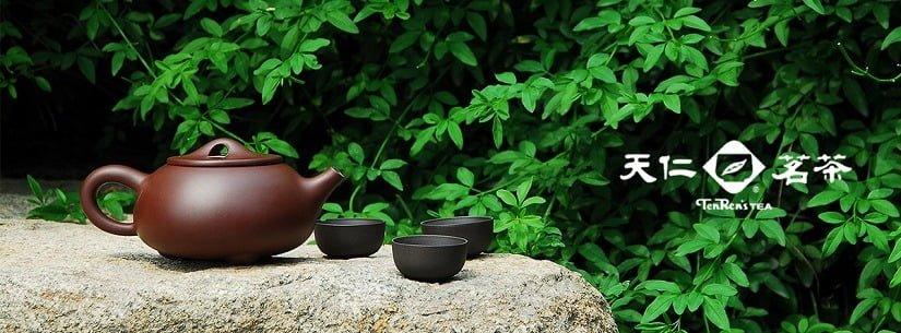TenRen Tea 天仁茗茶